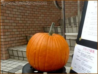 20151031 店先  1  かぼちゃ