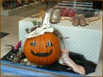 20151031 店先  3  かぼちゃ
