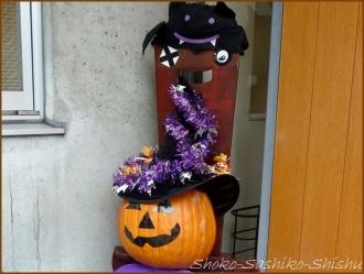 20151031 店先  5  かぼちゃ