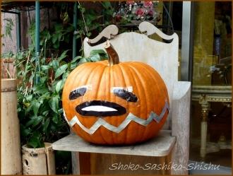 20151031 店先  14  かぼちゃ