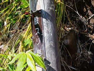 2015-10-15 苗場山50 (1 - 1DSC_0095)_R