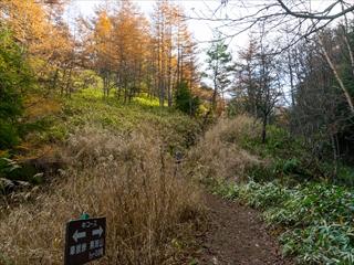 2015-10-20 浅間第一外輪山登山04 (1 - 1DSC_0004)_R