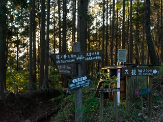 2015-10-26 丹沢13 (1 - 1DSC_0014)_R