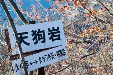 2015-11-6 表妙義縦走55 (1 - 1DSC_0070)_R