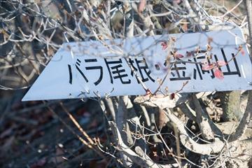 2015-11-6 表妙義縦走64 (1 - 1DSC_0085)_R