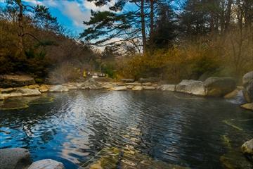 温泉 (1 - 1DSC_0007)_R
