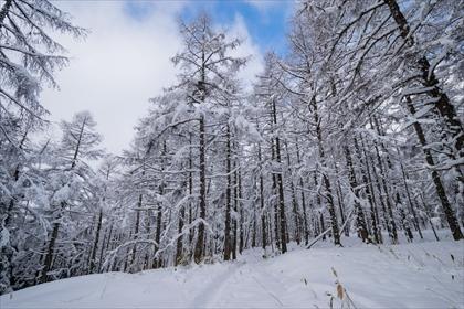2016-3-12 蓼科山05 (1 - 1DSC_0007)_R