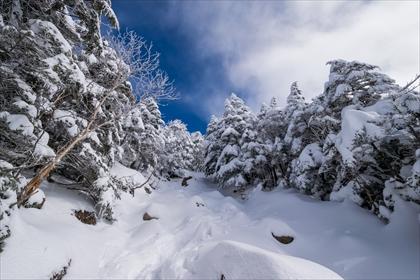 2016-3-12 蓼科山11 (1 - 1DSC_0016)_R