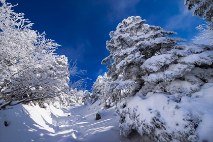 2016-3-12 蓼科山12 (1 - 1DSC_0017)_R