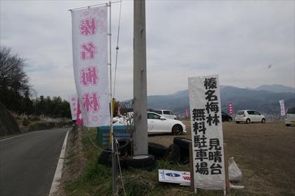 2016-3-18 榛名梅林05 (1 - 1DSC_0001)_R