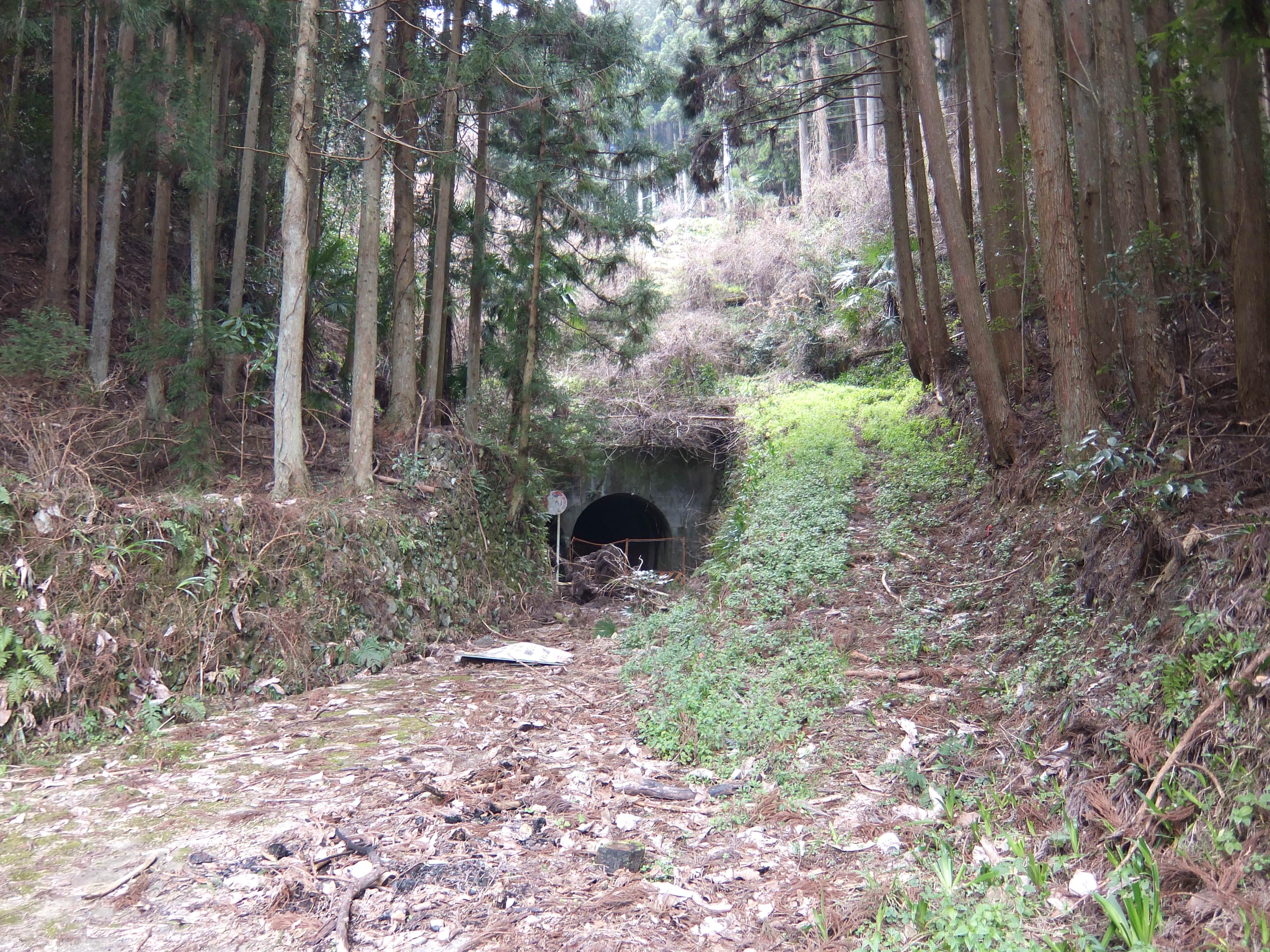 高野山森林鉄道2