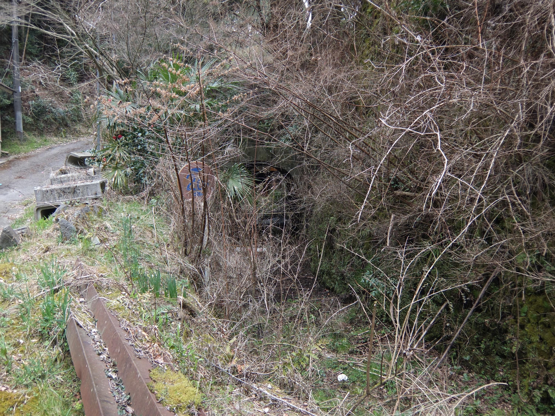 高野山森林鉄道3