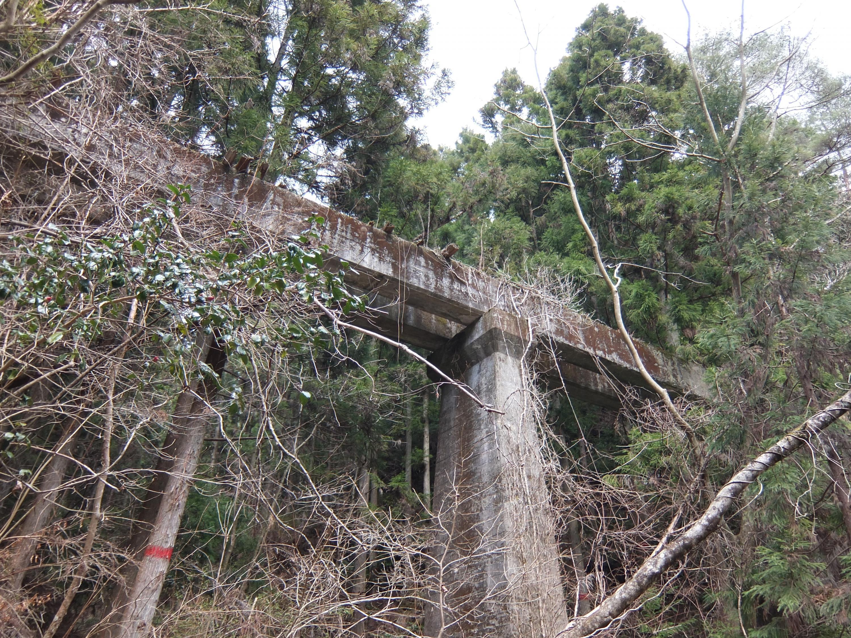 高野山森林鉄道5