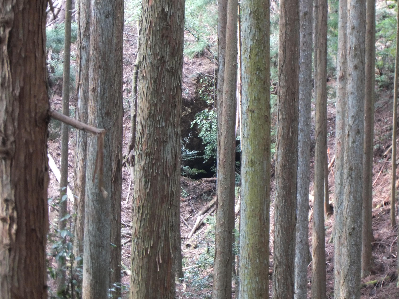 高野山森林鉄道13