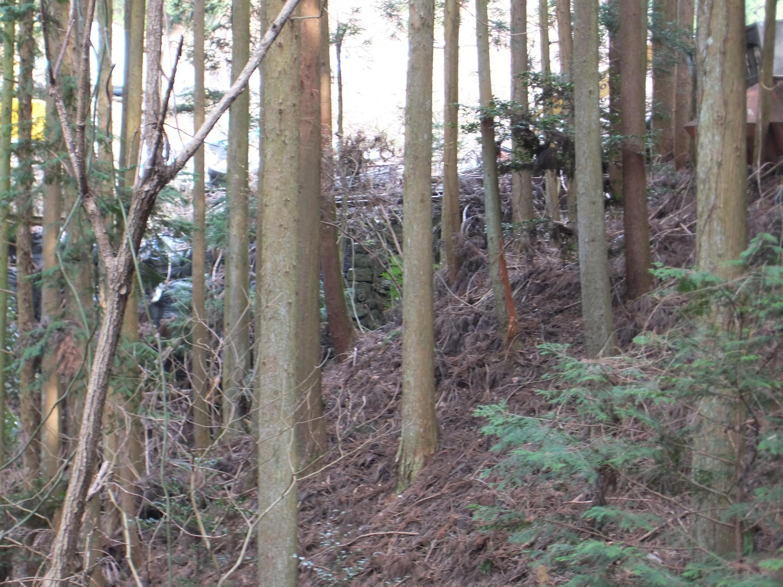 高野山森林鉄道14