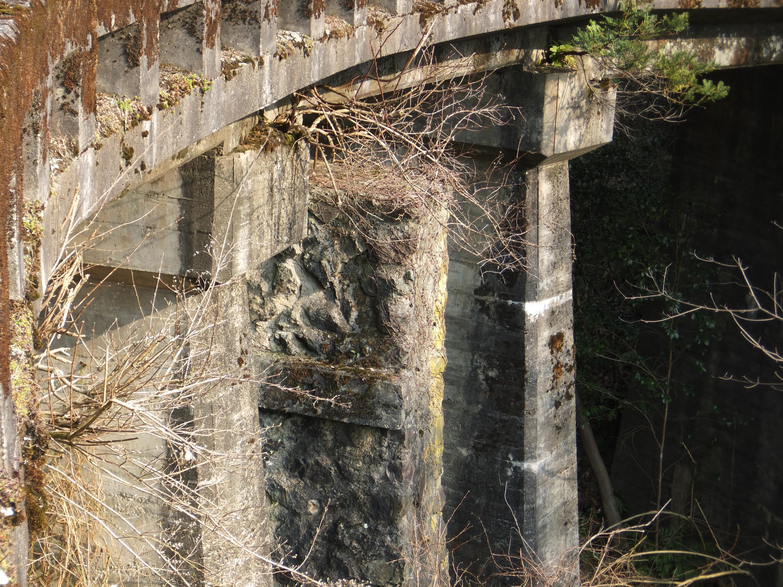 高野山森林鉄道20