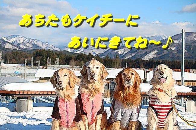 雪遊び2016 2014
