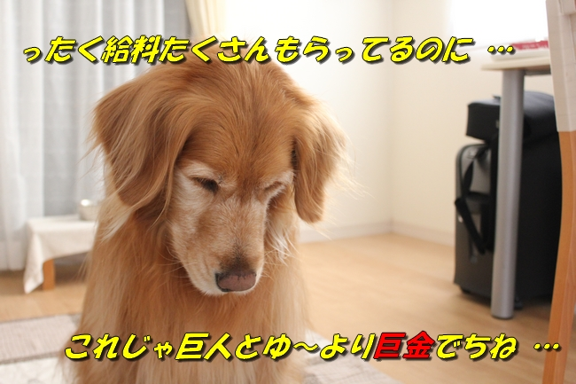 新聞天気聖子 079