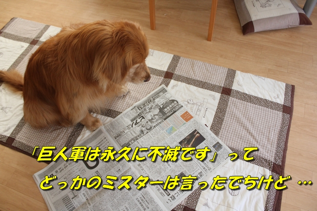 新聞天気聖子 085