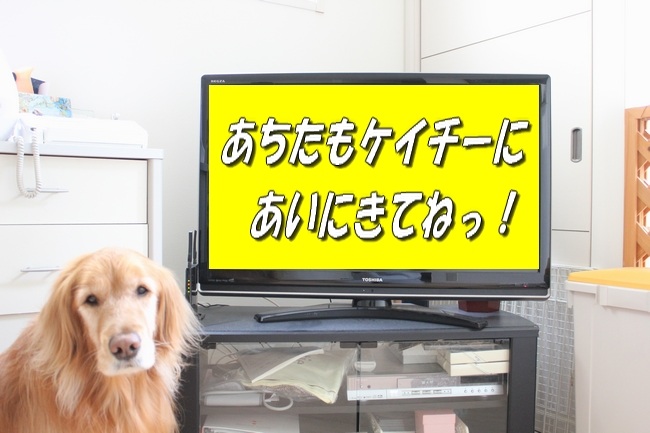 tv2 004