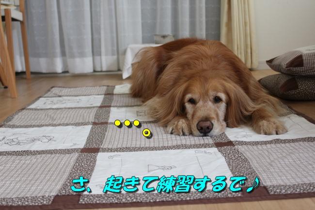 tv鑑賞 024