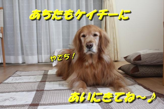 tv鑑賞 021