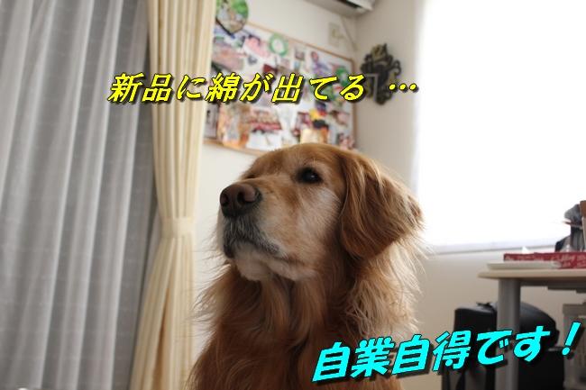新聞天気聖子 076