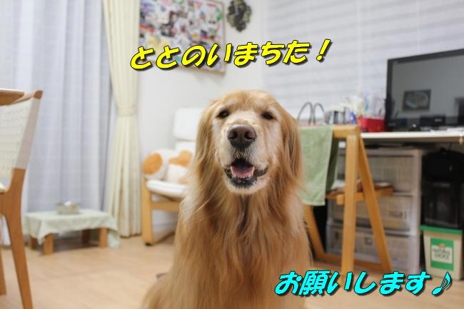 お顔 004
