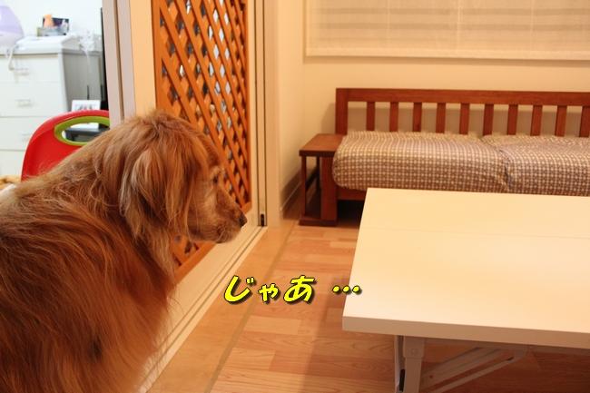 テーブル新聞 015