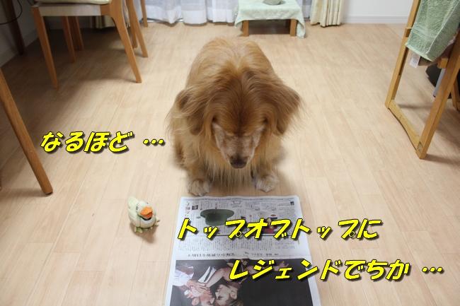 テーブル新聞 024