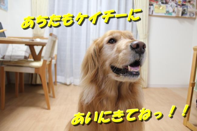 テーブル新聞 035