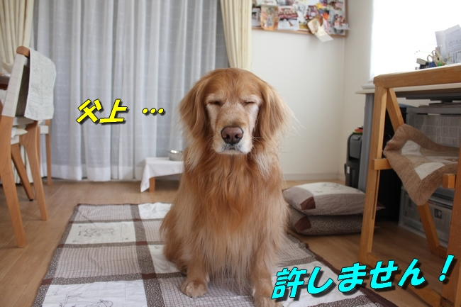 tv鑑賞 032