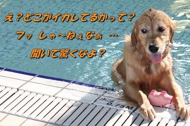 7_201603221833385ba.jpg
