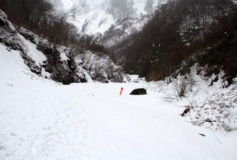 3月12日 谷川トレーリング(59)