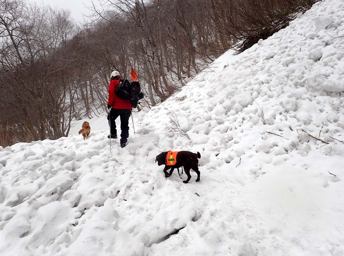 谷川岳雪中訓練 (76)