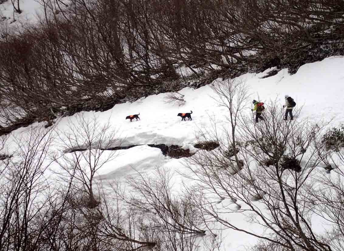 谷川岳雪中訓練 (78)