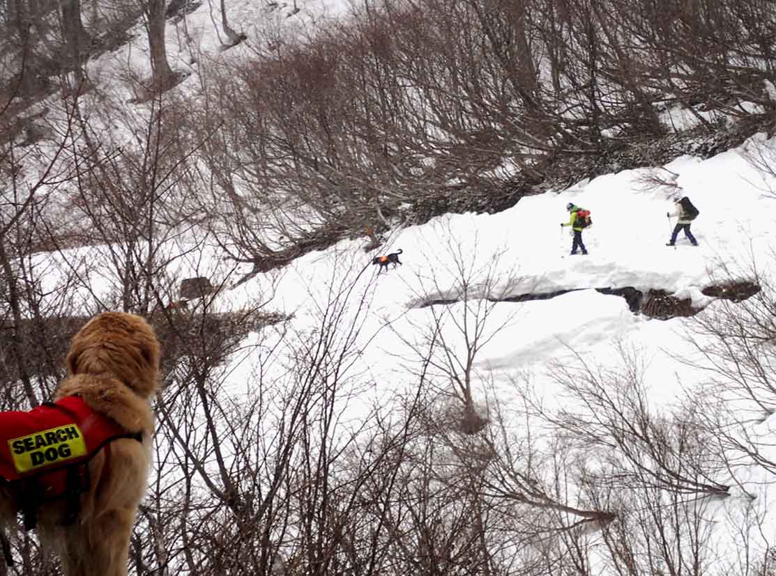 谷川岳雪中訓練 (79)