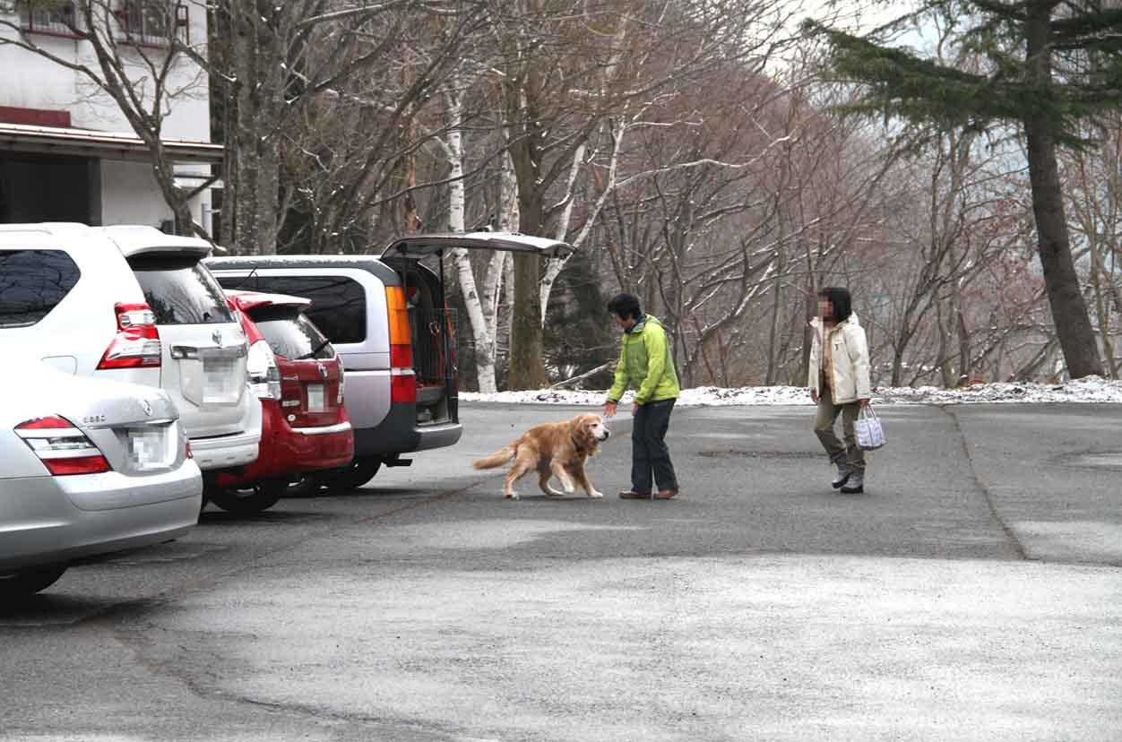 谷川岳雪中訓練 (84)
