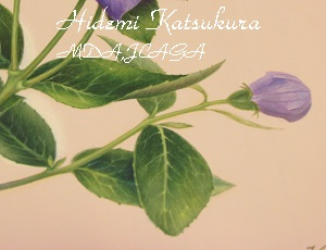 IMG_0346 - コピー