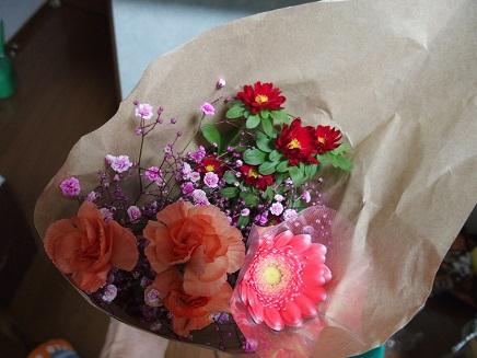 マロちゃんのお花
