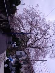 菅野写真2