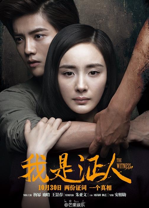見えない目撃者 (2015)