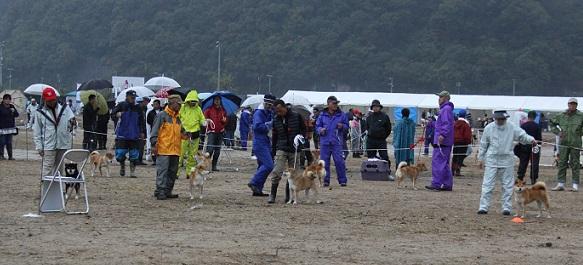 2015-11-14全国広島こばこ26