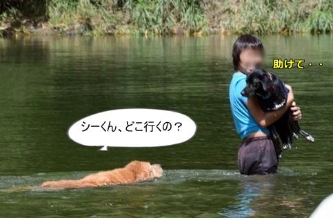 DSC_7254.jpg