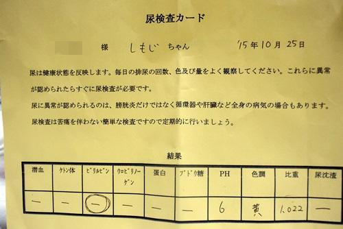 DSC_7707.jpg