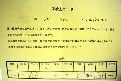 DSC_7708.jpg