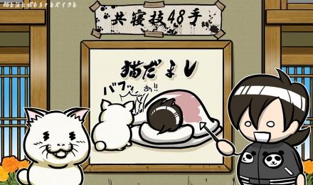 #004_猫だまし02