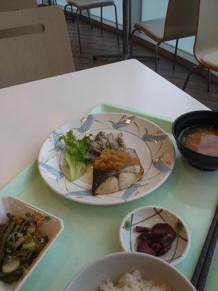 OWL、B定食鯖の卸しソース3