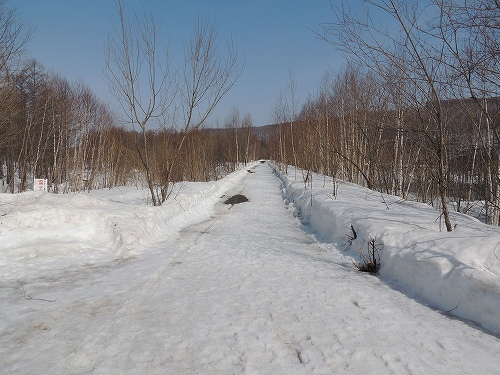 s-池までの道のり