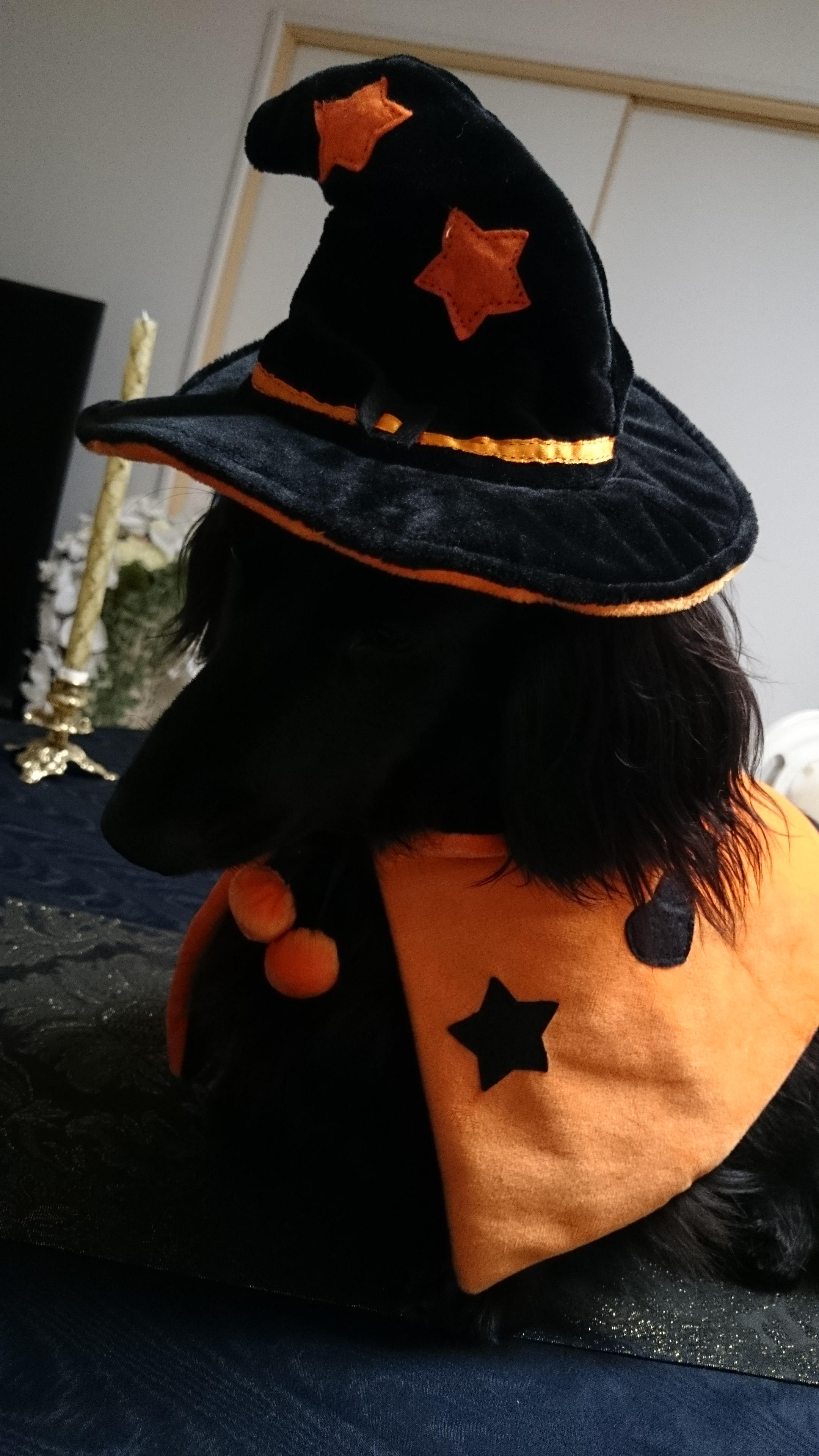 151102_Halloween_03.jpg